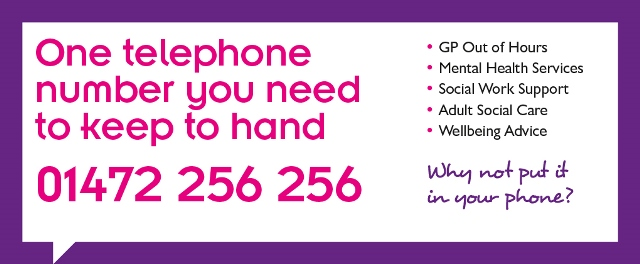Single point of access banner. One telephone number you need to keep to hand, 01472 256256. GP out of hours, mental health services, social work support, adult social care, wellbeing advice